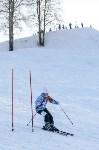 Первый этап чемпионата и первенства Тульской области по горнолыжному спорту, Фото: 23