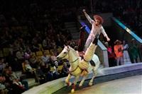 Цирк «Вива, Зорро!» в Туле , Фото: 85