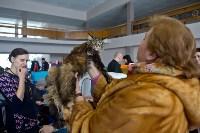 Выставка кошек в ГКЗ. 26 марта 2016 года, Фото: 82