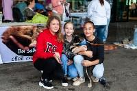 Благотворительный фестиваль помощи животным, Фото: 11
