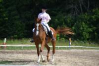 В Ясной поляне стартовал турнир по конному спорту, Фото: 36