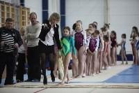 Соревнования по спортивной гимнастике на призы Заслуженных мастеров спорта , Фото: 2