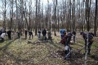 Посадка деревьев в Комсомольском парке, Фото: 31