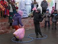 Масленичные гулянья в Плавске, Фото: 29
