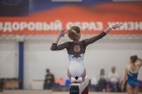 Первенство ЦФО по спортивной гимнастике, Фото: 152