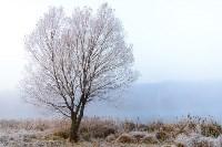 Ледяное утро в Центральном парке, Фото: 13