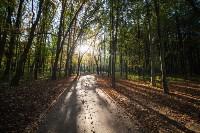 Золотая осень в Тульской области, Фото: 65