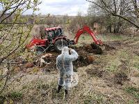 Чернский район, умерли 150 коров, Фото: 6