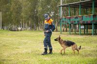 Испытания кинологов в Тульском спасательном центре, Фото: 29