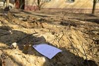 Документы клиентов страховой компании летают по улице, Фото: 4