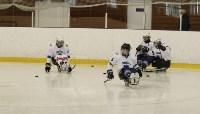 «Матч звезд» по следж-хоккею в Алексине, Фото: 2