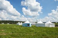 «Дикая мята» состоится! Что ждет гостей на фестивале, Фото: 32