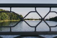 Летний день в богородицком парке, Фото: 24