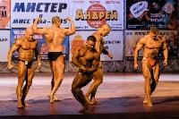 Чемпионат по бодибилдингу и бодифитнесу «Мистер и Мисс Тула - 2015», Фото: 115