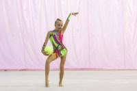 Межрегиональный турнир по художественной гимнастике — «Осенний вальс». 6-7 сентября 2014, Фото: 12