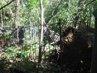 На старинном кладбище в Туле разгулялась стихия, Фото: 8