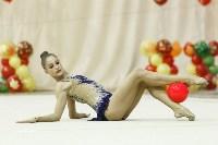 Художественная гимнастика. «Осенний вальс-2015»., Фото: 72
