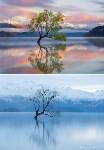 Озеро Ванака, Новая Зеландия, Фото: 4