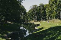Летний день в богородицком парке, Фото: 64