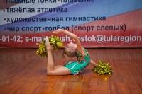 Чир-спорт в Тульской области, Фото: 22