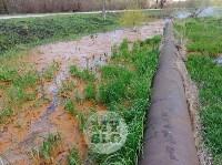 В деревне под Тулой из водопроводной трубы забили девять фонтанов, Фото: 11