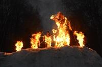 В ЦПКиО сожгли чучело зимы, Фото: 24