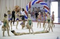 """Соревнования по художественной гимнастике """"Осенний вальс"""", Фото: 25"""