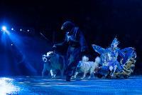 Шоу фонтанов «13 месяцев»: успей увидеть уникальную программу в Тульском цирке, Фото: 143