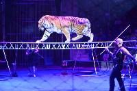 Цирковое шоу, Фото: 125