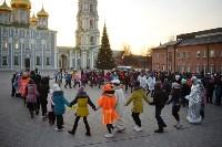 В Тульском кремле открылась новогодняя елка, Фото: 4