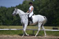 В Ясной поляне стартовал турнир по конному спорту, Фото: 31