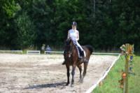 В Ясной поляне стартовал турнир по конному спорту, Фото: 40