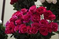 Ассортимент тульских цветочных магазинов. 28.02.2015, Фото: 57