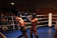 В Туле прошла матчевая встреча звезд кикбоксинга, Фото: 65