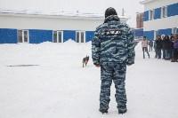 """""""Студенческий десант"""" - 2017., Фото: 37"""