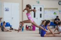 Тульские гимнастки готовятся к первенству России, Фото: 16