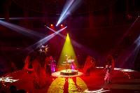 Шоу фонтанов «13 месяцев» в Тульском цирке – подарите себе и близким путевку в сказку!, Фото: 95