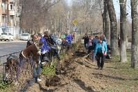 3200 кустов и деревьев высадили сегодня в Туле в ходе субботника, Фото: 10