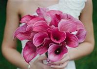 Мастер Flora, магазин цветов, Фото: 2