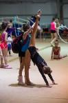 Соревнования по художественной гимнастике 31 марта-1 апреля 2016 года, Фото: 105