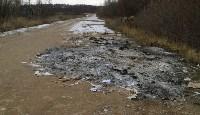 Столичный мусор в Тульской области, Фото: 1