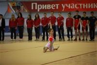 Торжественное открытие чемпионата и первенства России по классическому троеборью. 26 марта 2014, Фото: 2
