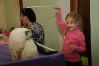 Выставка кошек. 21.12.2014, Фото: 30