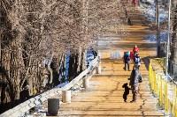Морозное утро в Платоновском парке, Фото: 35