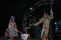 В Тульском цирке прошла премьера аква-шоу, Фото: 55