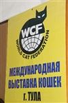В Туле прошла международная выставка кошек, Фото: 43