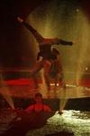 Aqua Show в Тульском цирке, Фото: 12