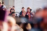 Крестный ход в Туле-2015, Фото: 108