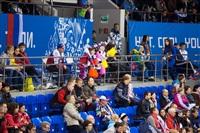 Женский хоккейный матч Канада-Финляндия. Зимняя Олимпиада в Сочи, Фото: 20