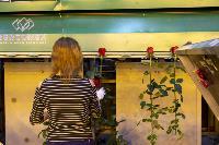 Миллион разных роз: как устроена цветочная теплица, Фото: 43